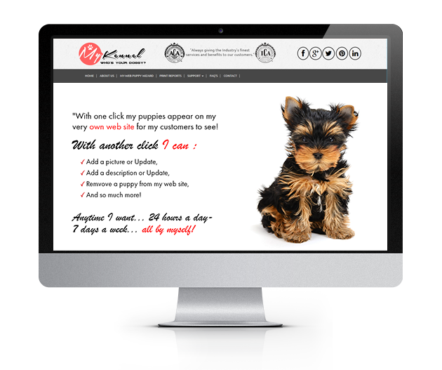 ACA Dogs - Home Page